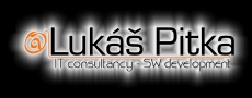 Lukáš Pitka - IT consultancy